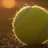 Mort de tous les joueurs de tennis du monde