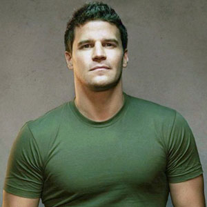 David Boreanaz Highest Paid Actor In The World Mediamass