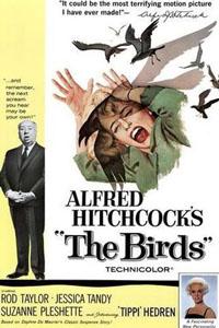 Cartaz: Gli uccelli