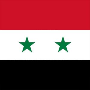 Presidente della Siria