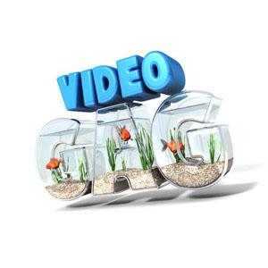 Vidéo Gag