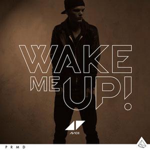 Copertina: Wake Me Up