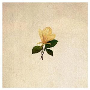 The Grand Magnolias Cover